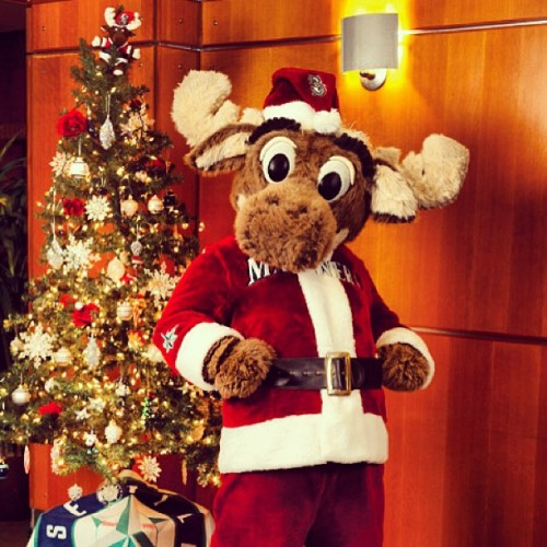 Santa Moose is coming to town this Friday at the Mariners Team Stores at Southcenter Mall (3:30-4:30 pm) & Bellevue Square.  (6-7 pm).